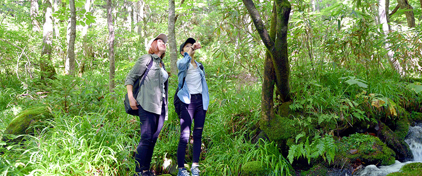 """""""自分らしさ""""を見つめ直す場所「癒しの森」森林セラピー"""