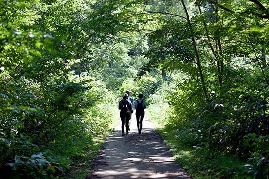 受け継がれてきた自然の恵みと文化の歩み「長野県信濃町」