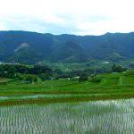 世界農業遺産認定!日本が誇るふるさとの暮らし「高千穂郷・椎葉山地域」