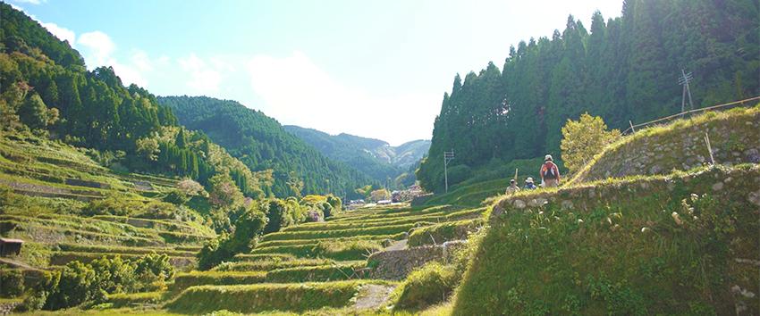 五感すべてで満喫「福岡県うきは市」人と森が出会うまち