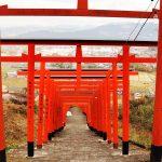 景色に映える赤鳥居「浮羽稲荷神社」91基の鳥居が見守るうきはの街