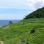 世界の暮らしの営みを受け継いでいく「世界農業遺産」