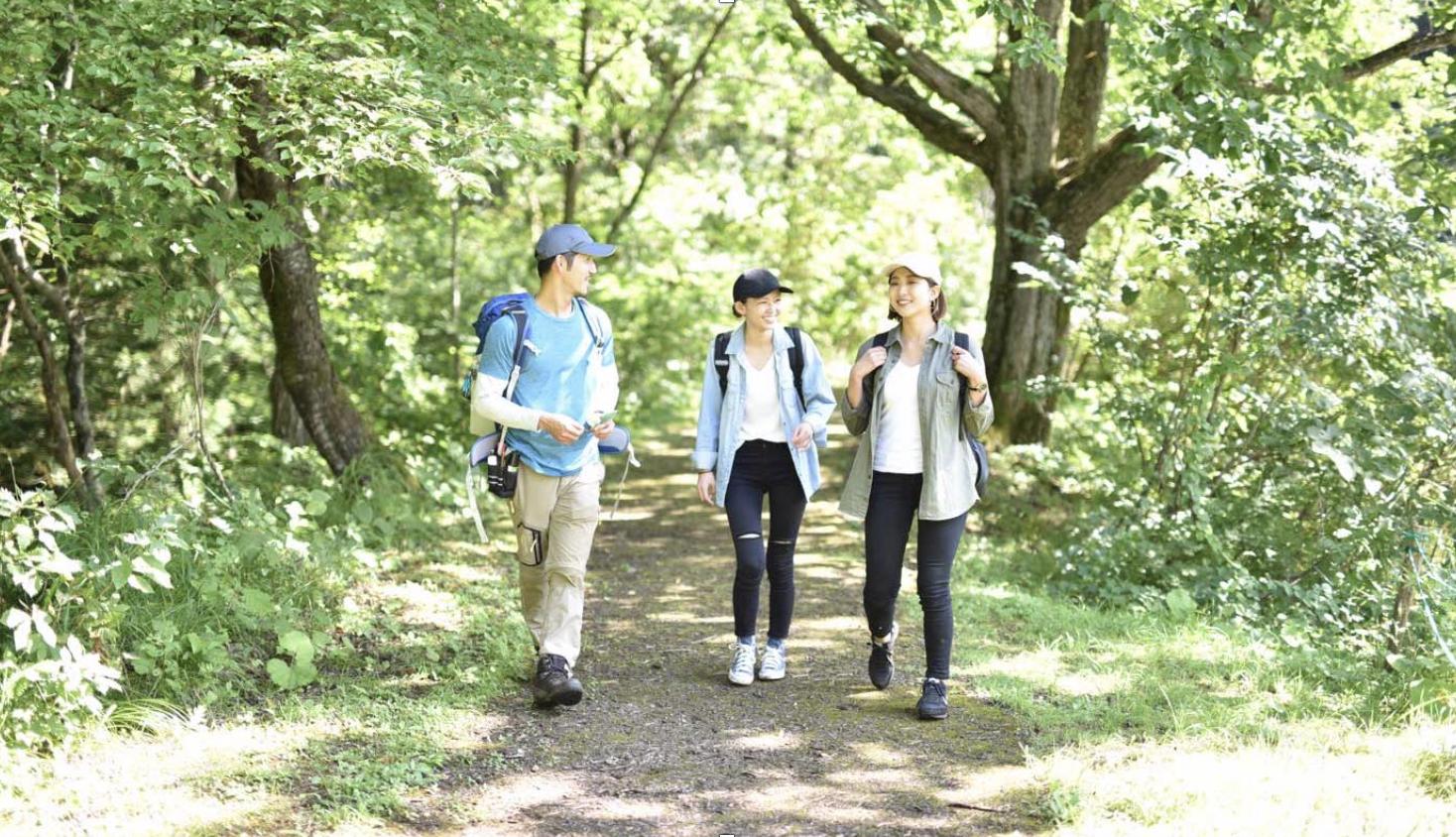 ふるさと納税の返礼品にも!森で地域も日本も元気にする長野県信濃町の森林セラピー